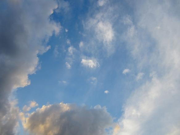 florida skies 2