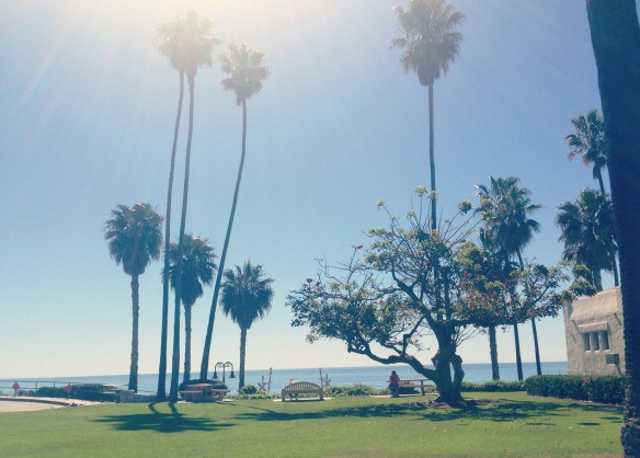 san clemente palms.jpg