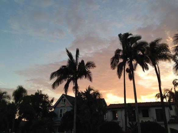 palm streets 2.jpg